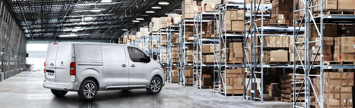 Peugeot_pro_corporative